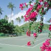 Tennis package - Spontaneous Spring Escape