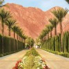 Tennis package - La Quinta Resort & Club - A Waldorf Astoria Resort, California
